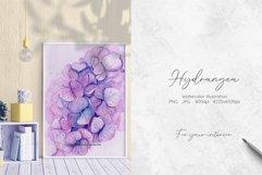 Hydrangea Watercolor Illustration Product Image 3
