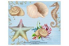 Mermaid ClipArt Afro American Mermaid Clip Art Product Image 5