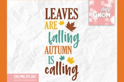 Leaves are falling autumn is calling, Fall Vibes svg, Fall s Product Image 2