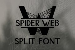 Spider Web Split Font - A Monogram Font Product Image 1