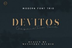 Devitos Modern & Elegant Serif Font Product Image 1