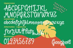 Qangbora - Swirled Fancy Fonts Product Image 5