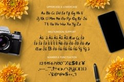 Web Font Sweet Home Product Image 5