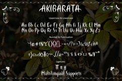 AKIBARATA Product Image 5