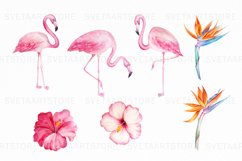 Tropical Watercolor Clipart Set Product Image 2