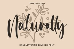 Naturally - Handlettering Brushed Font Product Image 1