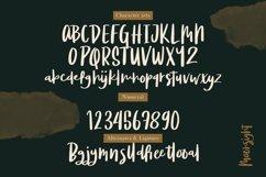 Web Font Moonsight - Script Font Product Image 5