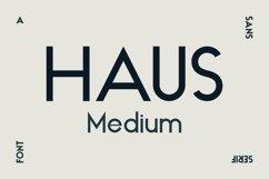 HAUS Sans Medium Product Image 1