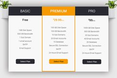 Web Pricing Table Product Image 3