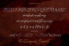 Sarfokats Monoline SIgnature Font Product Image 7