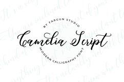 Butterflies Script Product Image 3