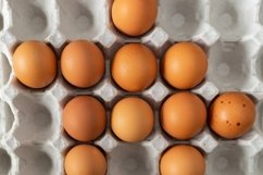Close-up of chicken eggs in an eco-friendly carton for eggs Product Image 1