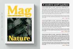 Agentic - Serif font family Product Image 7