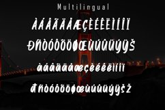 Alston - Handbrush Font Product Image 5