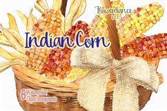 Indian Corn Watercolor Clipart, Rainbow Mix, Bi-Color, Sweet Product Image 3