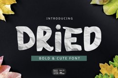 Dried Font Product Image 1