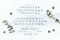 Web Font Madeon Script Font Product Image 5