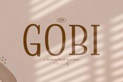 Web Font Gobi Product Image 1