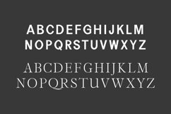 Perkin | Duo Font + Bonus Logo Product Image 4