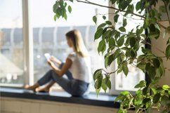 Millennial girl looks in smartphone while sitting by window. Product Image 1
