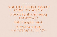 Swifted - Chic & Stylish Sans Product Image 5