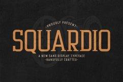 Web Font Squardio Product Image 1