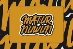 Belvana Brush Font Product Image 5
