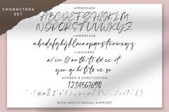 Sellviny - Handwritten Font Product Image 2
