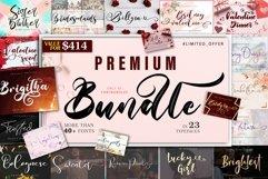 The 23 In 1 Premium Bundle - WEB FONT Product Image 1