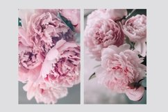 Pink Peonies Collection Product Image 4
