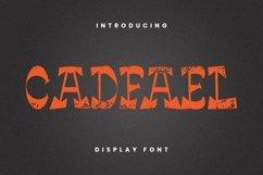 Web Font Cadfael Font Product Image 4