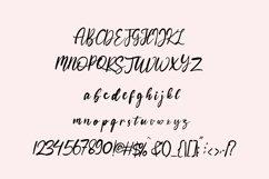 Bohemian - Script logo font Product Image 4