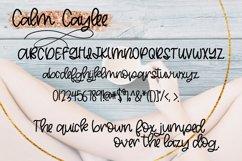 Calm Caylee Script Font Product Image 3