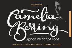 Camelia Berring Script Product Image 2