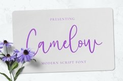 Web Font Camelow Product Image 1