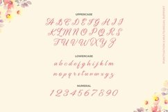 Web Font Candy & Andrie Font Product Image 3
