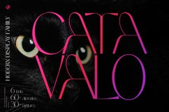 Catavalo - Modern display family Product Image 1