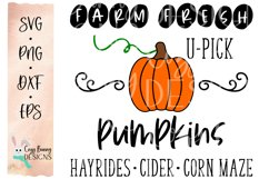 Farm Fresh Pumpkins Sign - Fall SVG Product Image 2