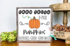 Farm Fresh Pumpkins Sign - Fall SVG Product Image 1