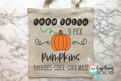 Farm Fresh Pumpkins Sign - Fall SVG Product Image 3