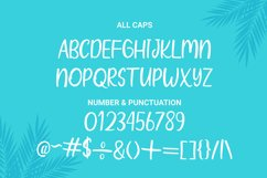 Wind Palm - Handwritten Font With Extras Product Image 6