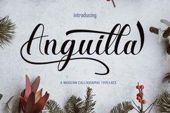 Anguilla Product Image 1