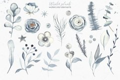 Winter plants watercolor collectoin Product Image 7