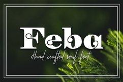 Feba Product Image 1