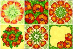 8 red poppy flowers backgrounds Product Image 3