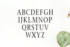 Jerrick Serif 6 Font Pack Product Image 2