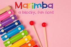ZP Marimba Product Image 1