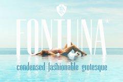 Fontuna Product Image 1