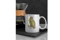 10 Vintage Parrots Transparent Clipart Images Product Image 2