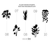 Mix and Match Plants Procreate Stamp Brush Product Image 5